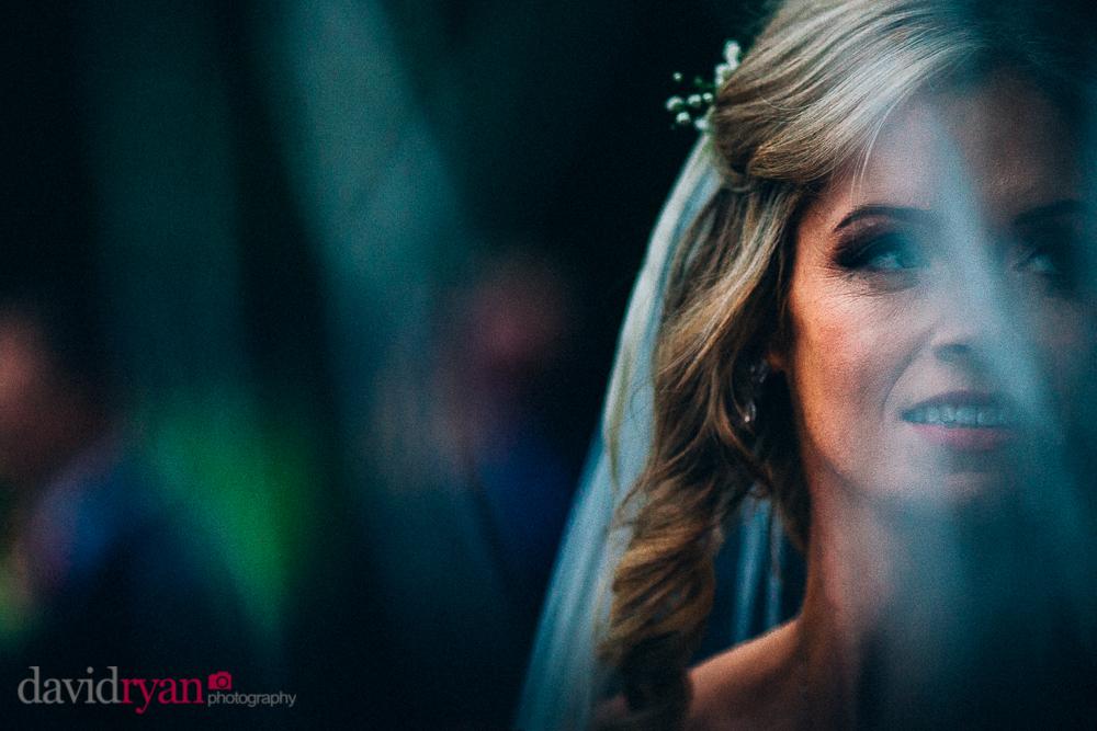 bridal portrait co. roscommon